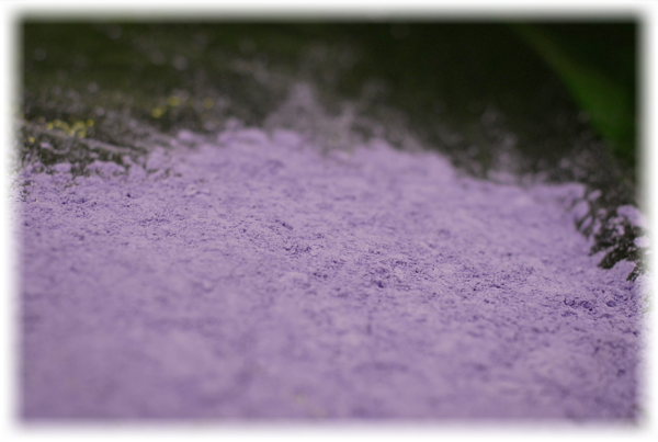 Purple Detection Powder